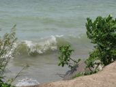 Point Pelee Shore