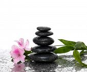 Spa still life with black stones and bamboo leafs with pink flower