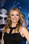 LOS ANGELES - APR 16:  Missi Pyle at the