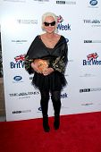 BODHILOS ANGELES - APR 22:  Amanda Eliasch at the 8th Annual BritWeek Launch Party at The British Re