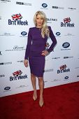 BODHILOS ANGELES - APR 22:  Dani Behr at the 8th Annual BritWeek Launch Party at The British Residen