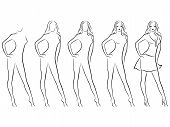 Beautiful Female Contour In Drawing Sequence