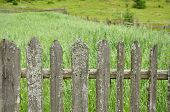 Old Wooden Fence With Moss