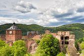 Ruins Of Castle Heidelberg