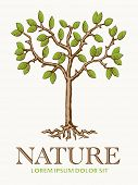 Tree Nature Symbol. Vector Illustration of young tree with roots vector design template.