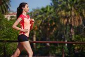 Brunette female runner jogging in palm trees park