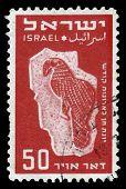 Dove From Torah-shrines