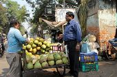 KOLKATA - NOVEMBER 28: seller sells coconuts on the outdoor market on November 28, 2012 in Kolkata. Only 0.81% of the Kolkata's workforce employed in the primary sector (agriculture)