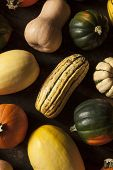Organic Assorted Autumn Squash