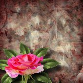 Beautiful Hand Drawn Rose Branch And Sheet Of Paper On Abstract Background