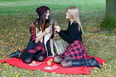 Young Adults Having Picnic In Park Among Autumn Leaves.