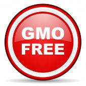 gmo free web icon