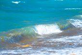 Photo Of A Beautiful Aqua Closeup
