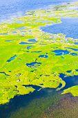 Lake verontreiniging