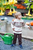 Little Cute Kid Boy With Big Yellow Flowers On Harvest Festival,