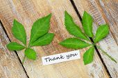 Thank you card with two green leaves on rustic wooden surface
