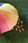 MONEY AND UMBRELLA