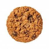 Oatmeal Raisin Cookie Isolated