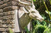 the deer head sculpture