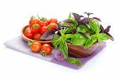 Fresh farmers tomatoes and basil. Isolated on white background
