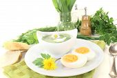 Green Herb Soup With Daisy