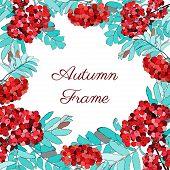 Ashberry frame
