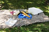 Picnic snack on checkered blanket on grass in park
