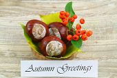 Autumn greetings card with chestnuts, rowan berry and leaves
