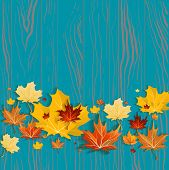 Yellow maple leaves on green wood background. Seasonal design