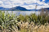 Lake Brunner, New Zealand