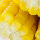 foto of corn-silk  - Closeup Grains of ripe yellow color corn - JPG
