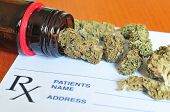 stock photo of weed  - Photo of dry medical marijuana buds  with shallow depth of field - JPG