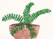 Original Child Painting Of Fern In Flowerpot