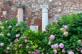stock photo of vicenza  - Two of the Roman style columns in the external courtyard of the olimpic theatre in Vicenza - JPG