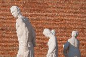 image of vicenza  - Statues on the top of the Basilica palladiana the main monument of the town Vicenza - JPG