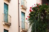 stock photo of vicenza  - View of a flowered balcony of a wooden window in a house of the town center of Vicenza - JPG