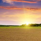 Plowed Field And Beautiful Sunset