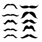 picture of mustache  - Set of mustache  - JPG