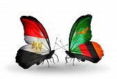 Two Butterflies With Flags On Wings As Symbol Of Relations Egypt And Zambia