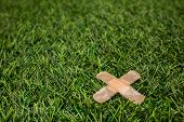 Adhesive Plasters Sticked To Green Grass Close Up