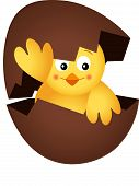 Yellow Chick in a Chocolate Egg