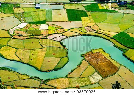 Rice field in valley in