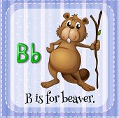 picture of letter b  - Flashcard letter B is for beaver - JPG