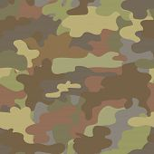 picture of camouflage  - Seamless camouflage military pattern in brown  vector - JPG