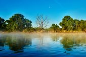 image of early morning  - picturesque reflective landscape of river with misty fog in early summer morning  - JPG