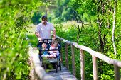 picture of baby twins  - Young active father with kids in double stroller in a park - JPG