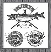 picture of trout fishing  - Set of vector fishing emblem with trout and pike - JPG