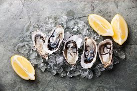 picture of pearl-oyster  - Opened Oysters on stone plate with ice and lemon - JPG