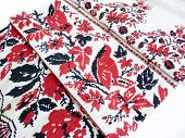 pic of dowry  - The beautiful ornament embroidered on a canvas - JPG