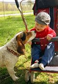 picture of baby-boy  - My son and my dog in 1991 taken by G Clark